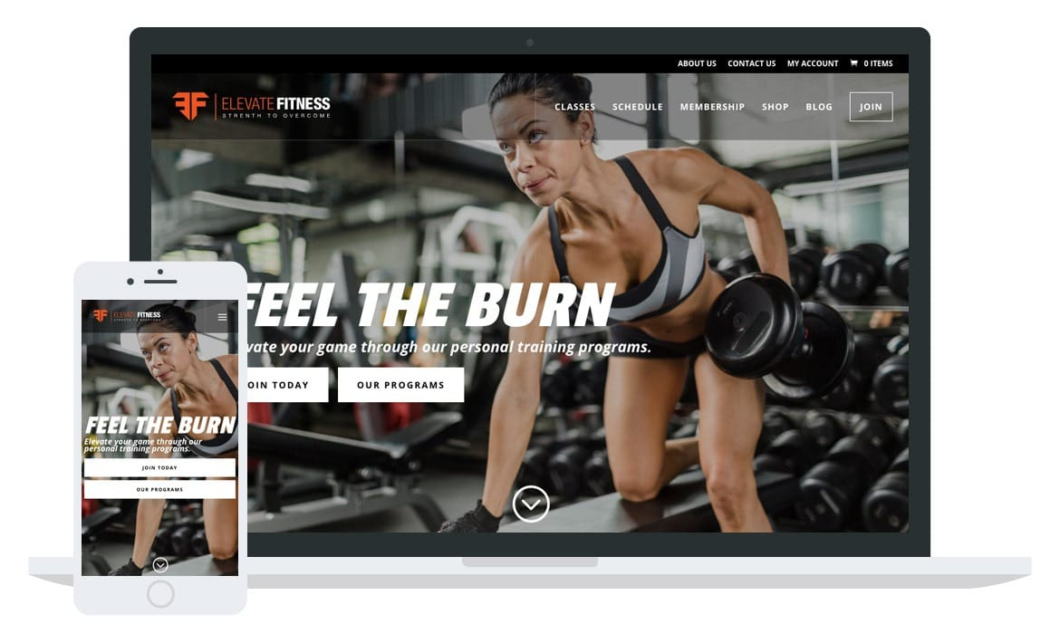 Elevate Fitness website